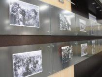 Открылась выставка «Помним и скорбим»