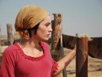 Фильм «Степняк» стал «лучшим художественным фильмом» января