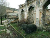 Собраны факты вандализма над историческими и архитектурными памятниками на оккупированных территориях Нагорного Карабаха