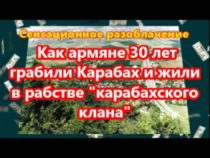 Багдасарян: Армяне 30 лет отравляли и грабили Карабах