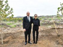 Президент Ильхам Алиев и Первая леди Мехрибан Алиева посетили Физулинский район
